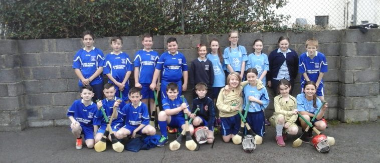 Indoor Hurling and Camogie Competition
